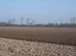 preparing-for-world-grassland-2
