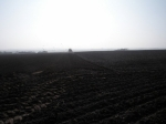 preparing-for-world-ploughing-grassland-in-March-2014