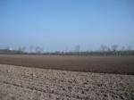 preparing-world-grassland-3
